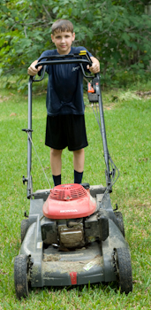 douglas lawnmower
