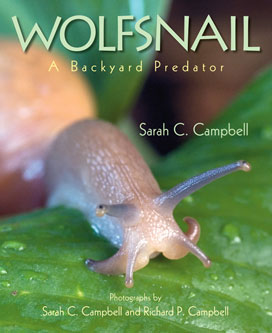 Wolfsnail cover