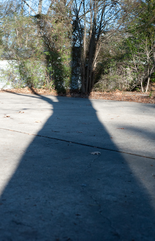 shadow of tree across parking pad